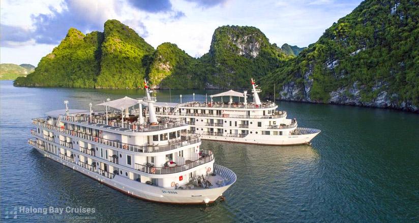 Paradise Elegance Cruise review