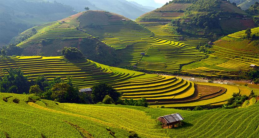 North Vietnam Climate