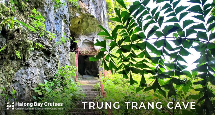 Trung Trang Cave