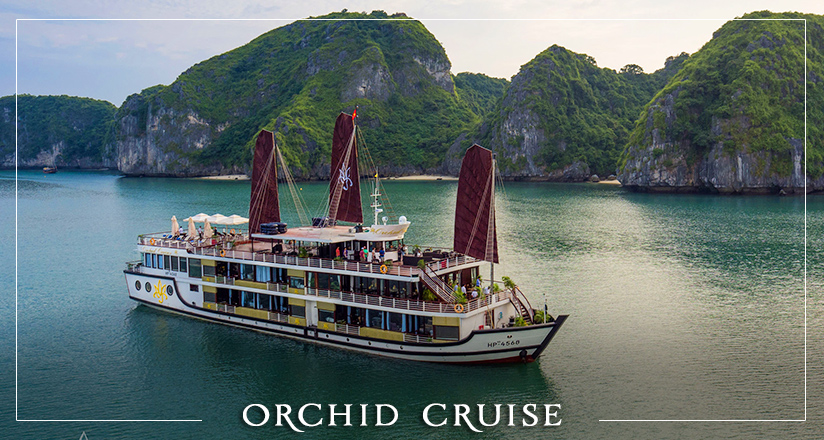 Orchid Cruise