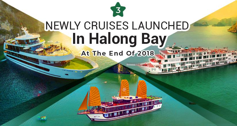 New Halong Bay Cruises